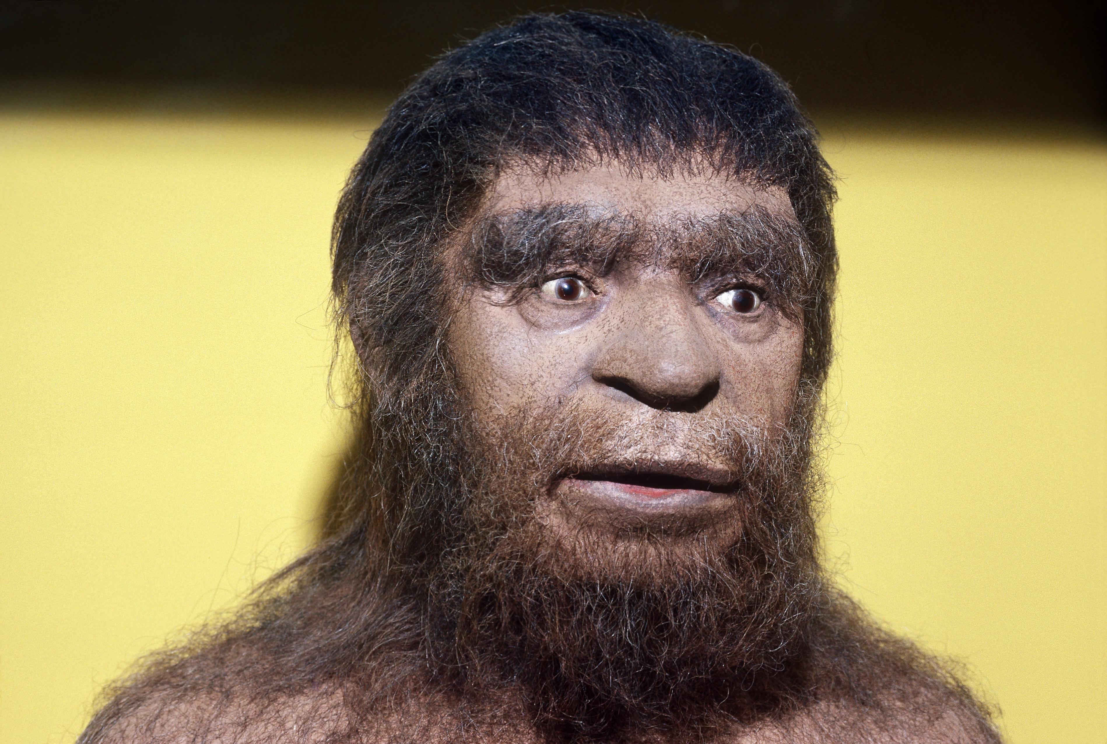 How Long Ago Did Cavemen Walk The Earth