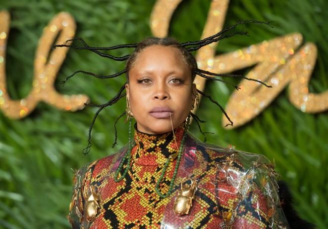 Image result for Erykah Badu