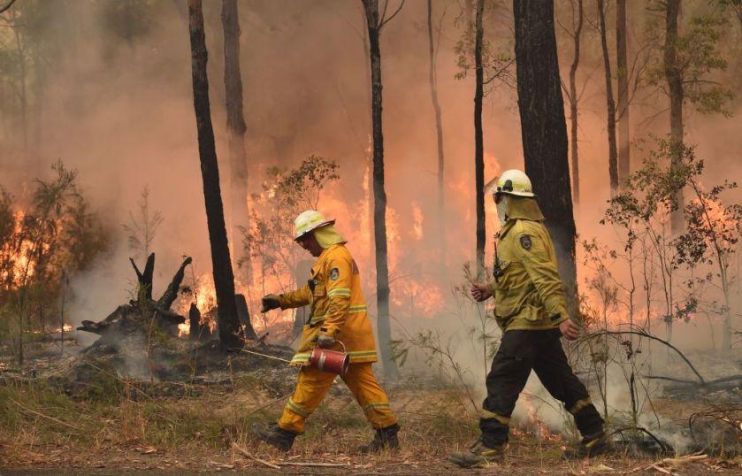 Image result for Australian bush fires images