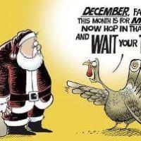 Happy Turkey Day Week!