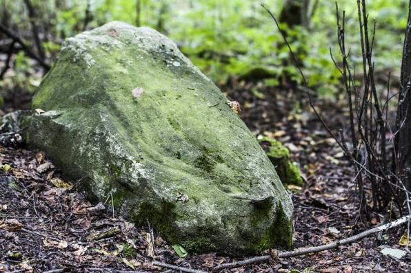 Žydiškių akmuo su gyvatės įspaudu