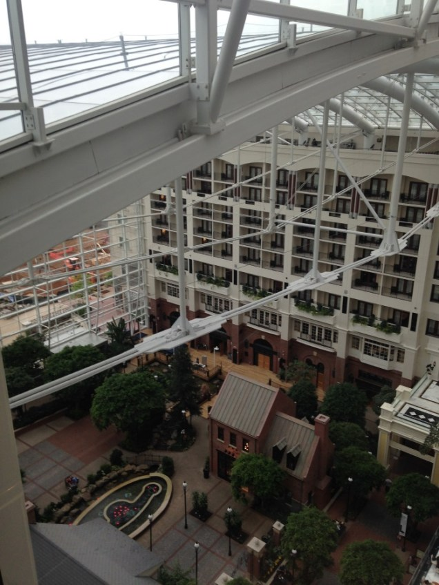 Gaylord Hotel - View from the Elevator