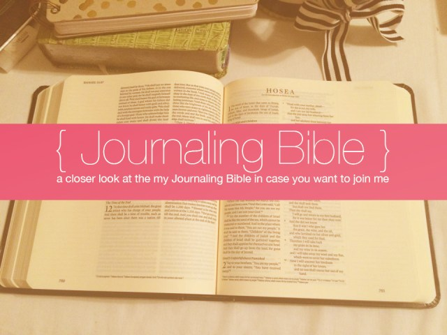 A Closer Look at my Journaling Bible | apileofashes.com