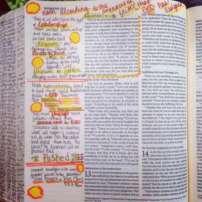 Journaling Bible | The Gift of Leadership | apileofashes.com
