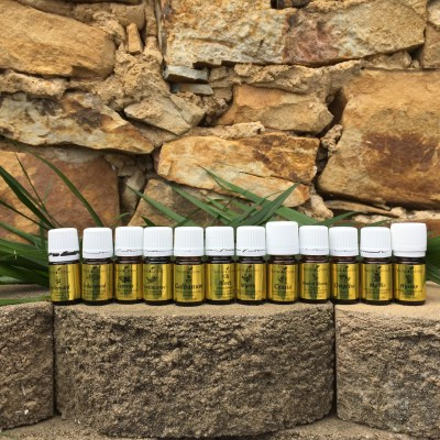 Essential Oils & God's Word