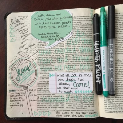 Journaling Bible | Adam's Descendants