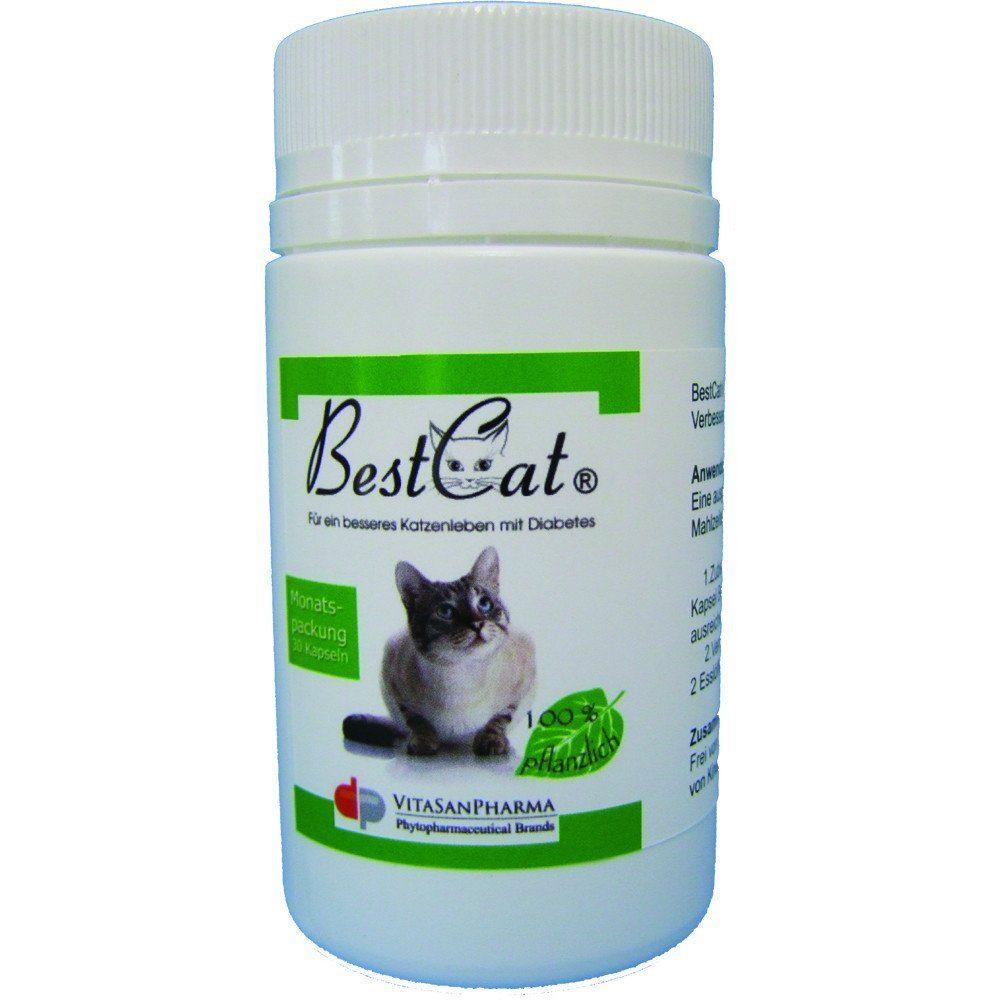 BestCat® bei Katzendiabetes