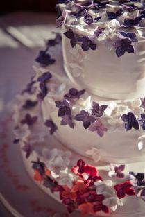 torta nostra 3