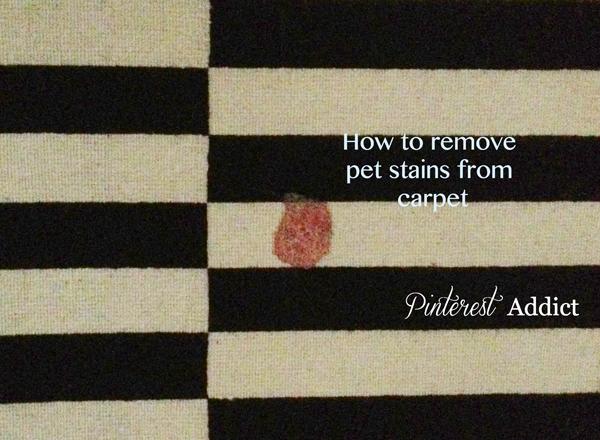 Dog Barf Amp Carpet Stain Remover Pinterest Addict