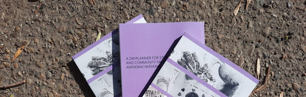 Image of 3 copies of the 2020-2021 APIRG ALMANAC displayed across a concrete background. The books are light purple with black and white images.