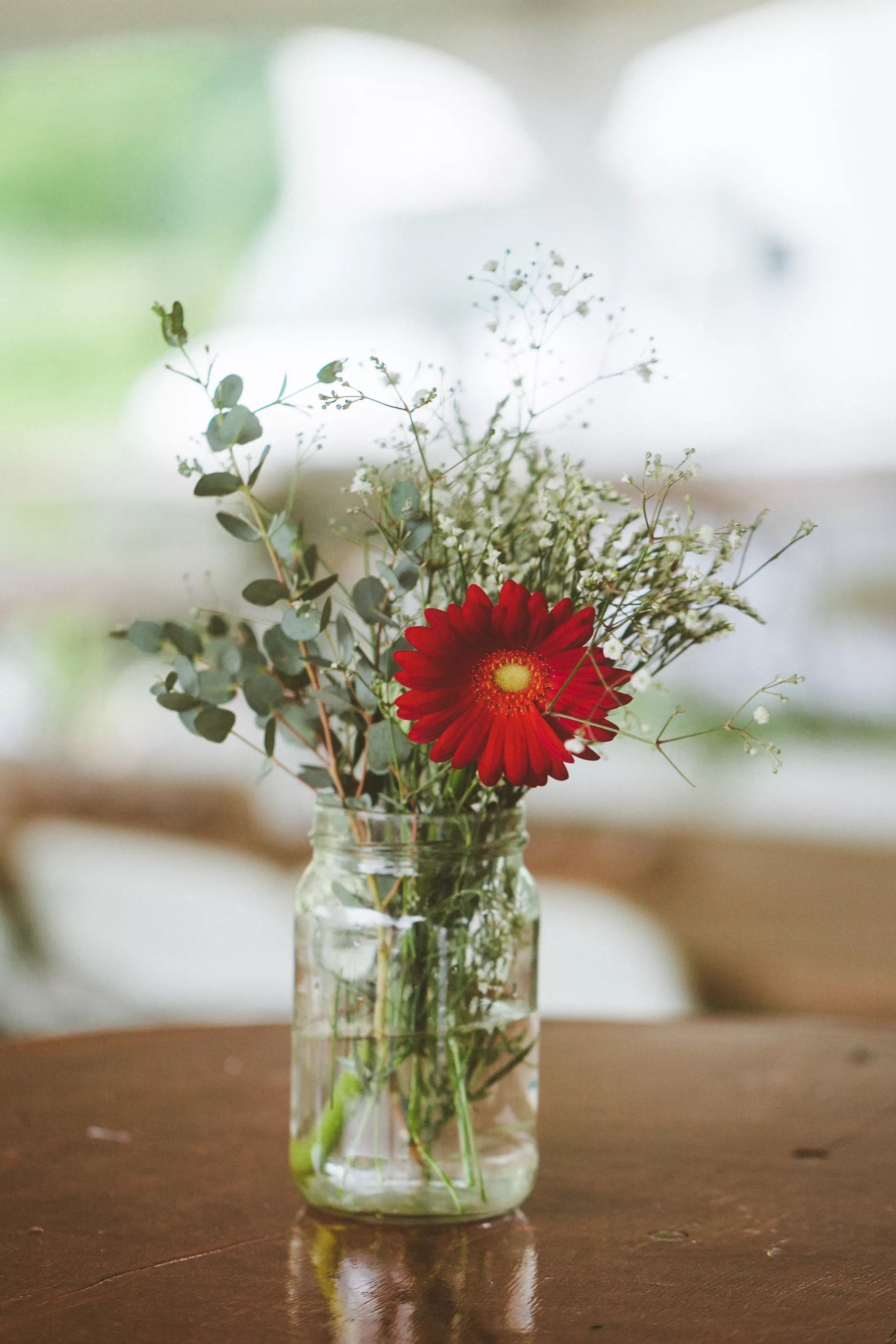 Red Gerbera Daisy and Babys Breath Centerpiece