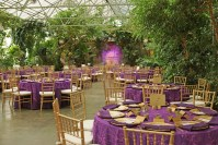 Purple Dining Tables Gold Accents