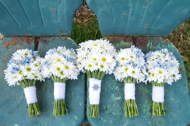 10 Inexpensive Flowers You'll Love