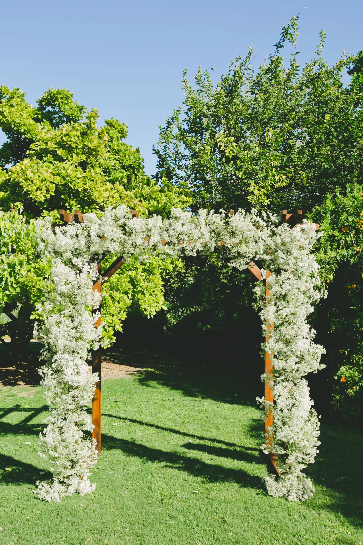 Babys Breath Wedding Arch
