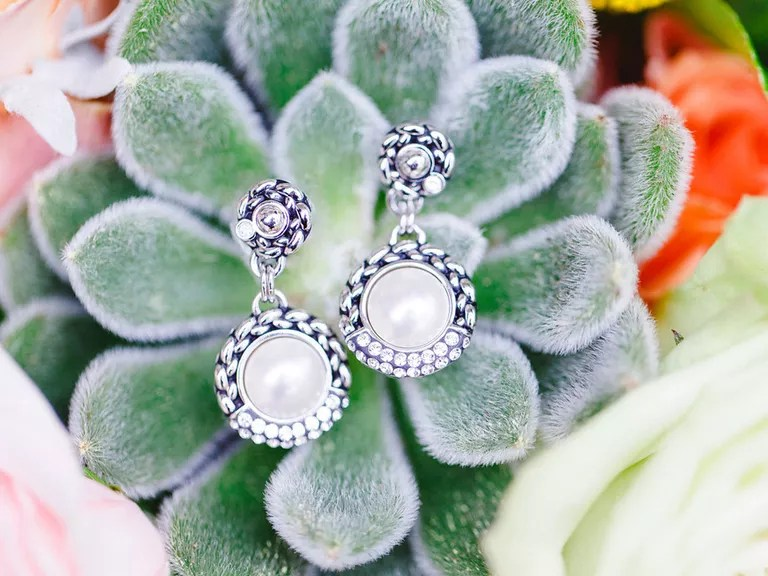 Earrings on succulents