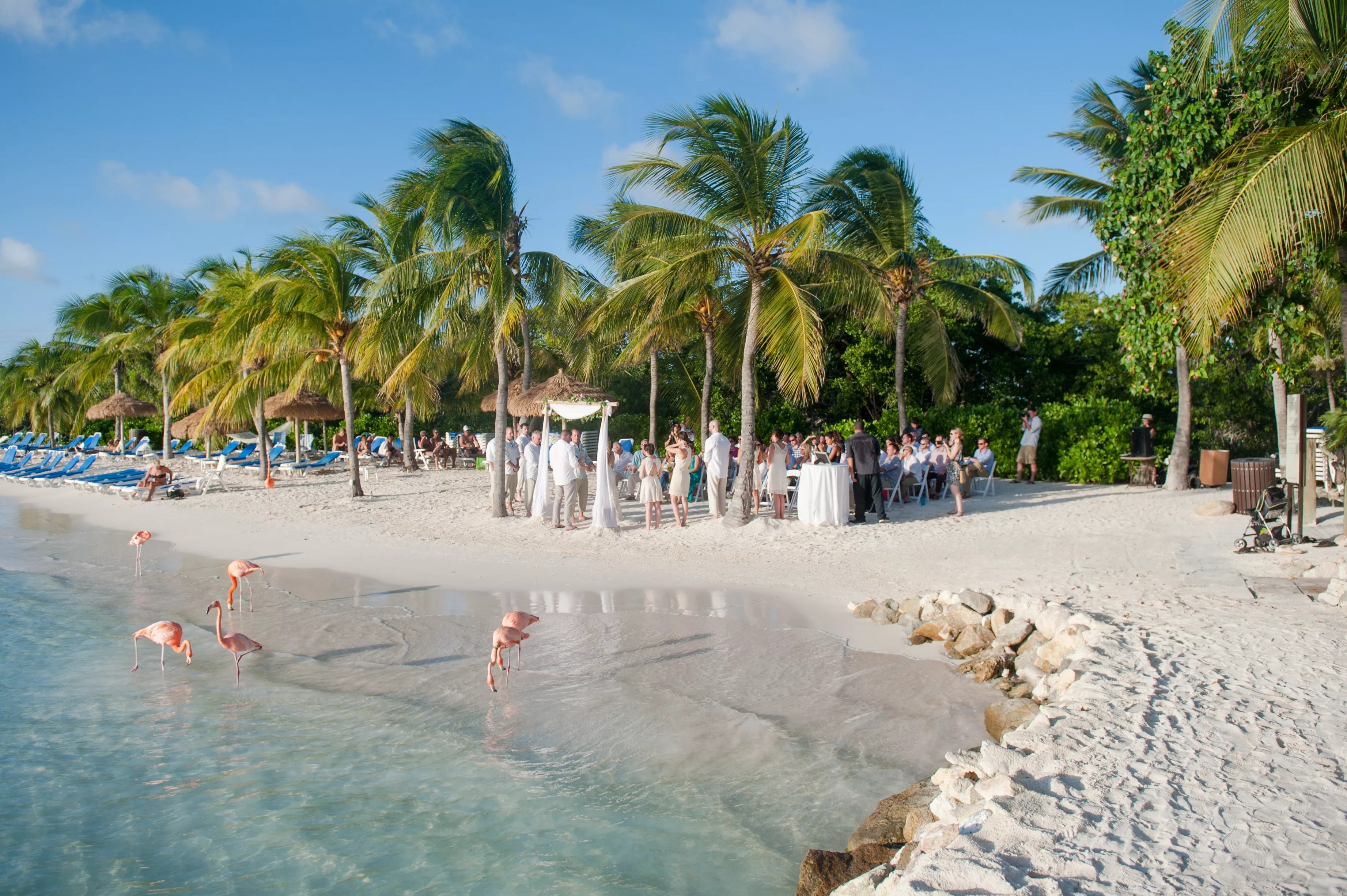 Casual Beach Wedding Ideas