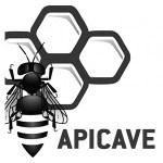parceria-apicave