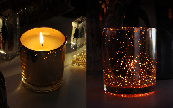 Welcome to Faustine, our new organic amber candle