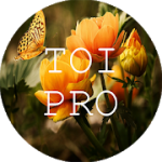 Text Over Image PRO Write Text On Photos Memes v1.1.8 APK Paid