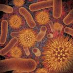 Infectious Disease Compendium v39.01.01 APK