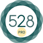 528 Player Pro  Lossless 432hz Audio Music Player v31.3 APK Paid