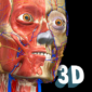 Anatomy Learning – 3D Atlas 2.1.5 APK for Android – Download