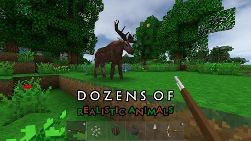 Survivalcraft 2 Day One 2.2.11.3 screenshots 4