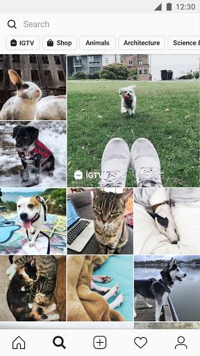Instagram 167.0.0.24.120 screenshots 4