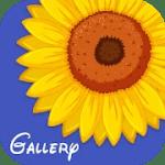 Gallery Ad Free V 1.0 APK Paid