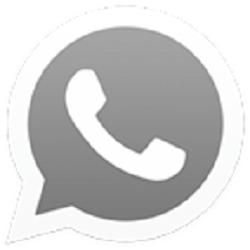 OG WhatsApp Pro