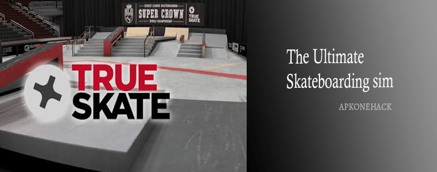 True Skate apk download