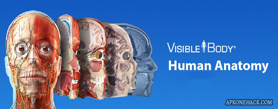 Human Anatomy Atlas 2020 Apk + OBB Data [Unlocked] v2020 0 71
