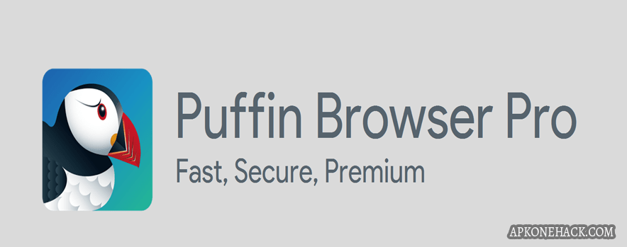 Puffin Browser Pro full apk