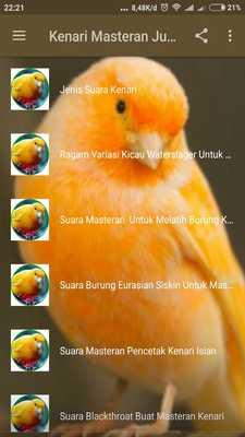Download Mp3 Gratis Suara Kenari Juara : download, gratis, suara, kenari, juara, Kenari, Masteran, Juara, Offline, ApkOnline