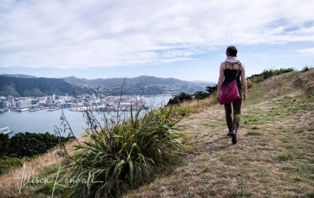 WM_MtVictoria_Wellington_NZ_07