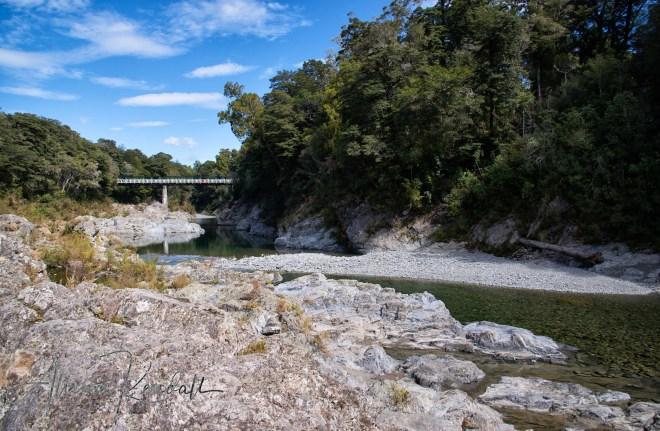 WM_Pelorus_River_NZ_13