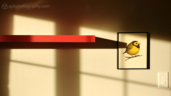 Warm winter light on a wall, red shelf and yellow bird