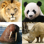 Animals Quiz – Learn All Mammals, Birds and more! 3.0.0