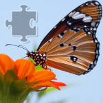Download Butterflies Jigsaw Puzzle 1.1 APK For Android