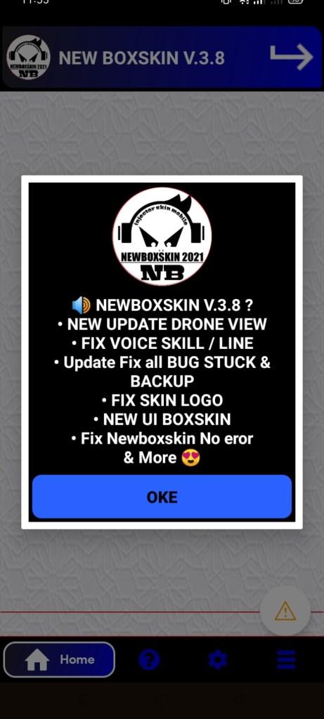 Screenshot-of-New-BoxSkin-2021-3.8