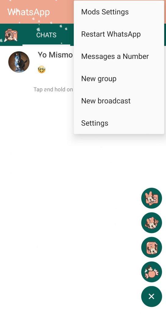 Screenshot of RA WhatsApp App