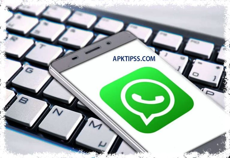 Whatsapp Details