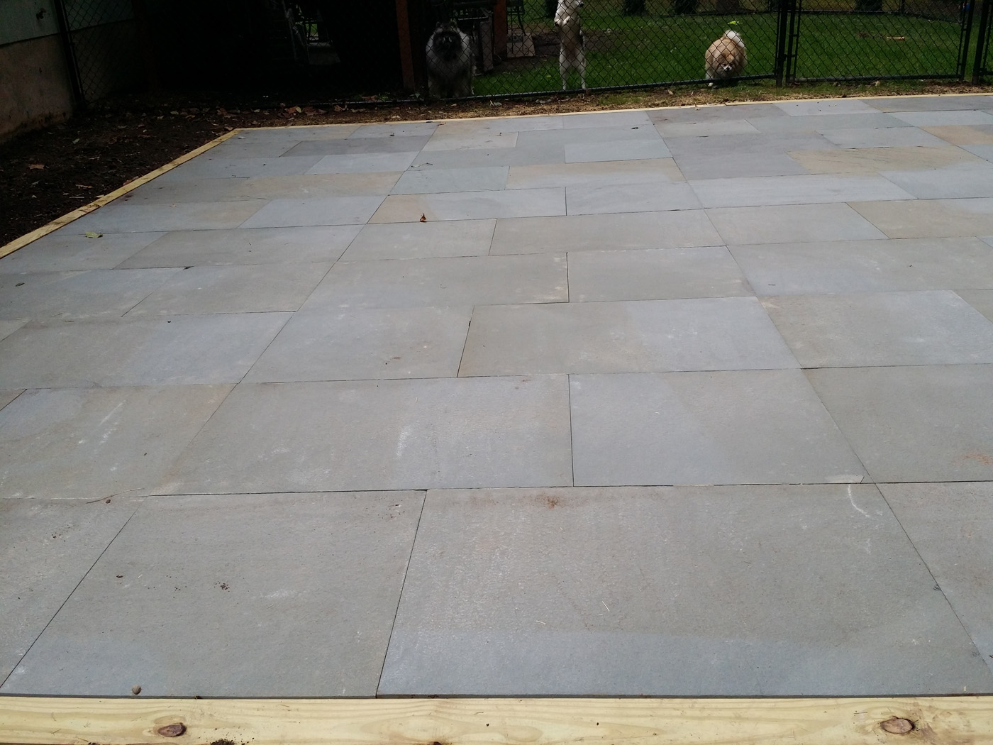 Thermal Bluestone Patio  almost PERFECT Landscaping