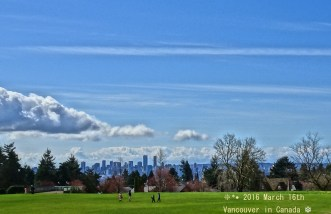 2016 03 16 Vancouver Grand Blvd. park trees chem city
