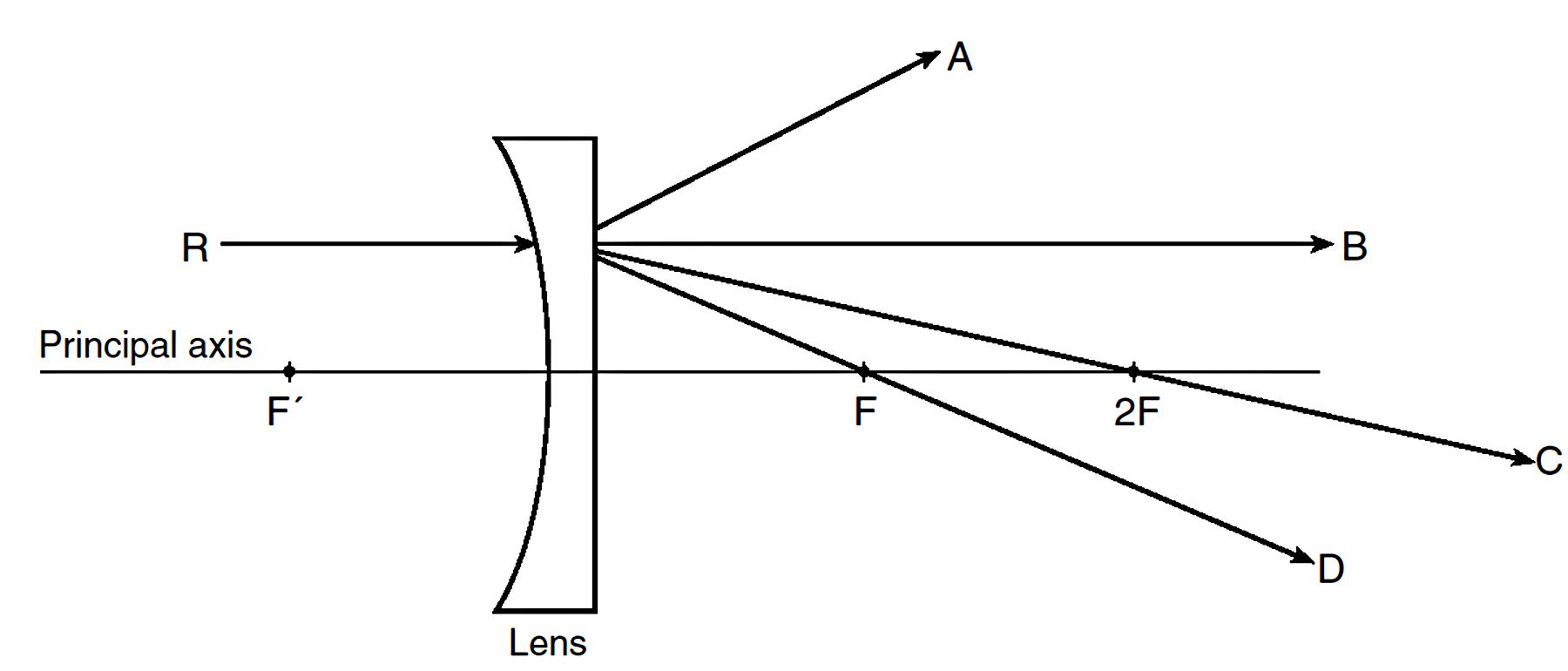 light ray diagram worksheets ford focus 2005 wiring diverging lens worksheet www topsimages com png 1800x770