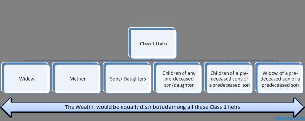 Class 1 heirs