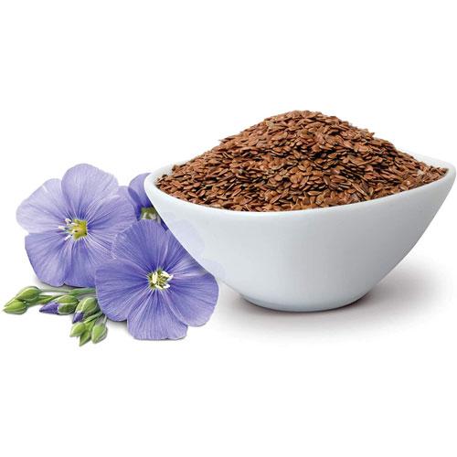 Raw Natural Unroasted Flaxseeds Khadi Orahi - 450 gm
