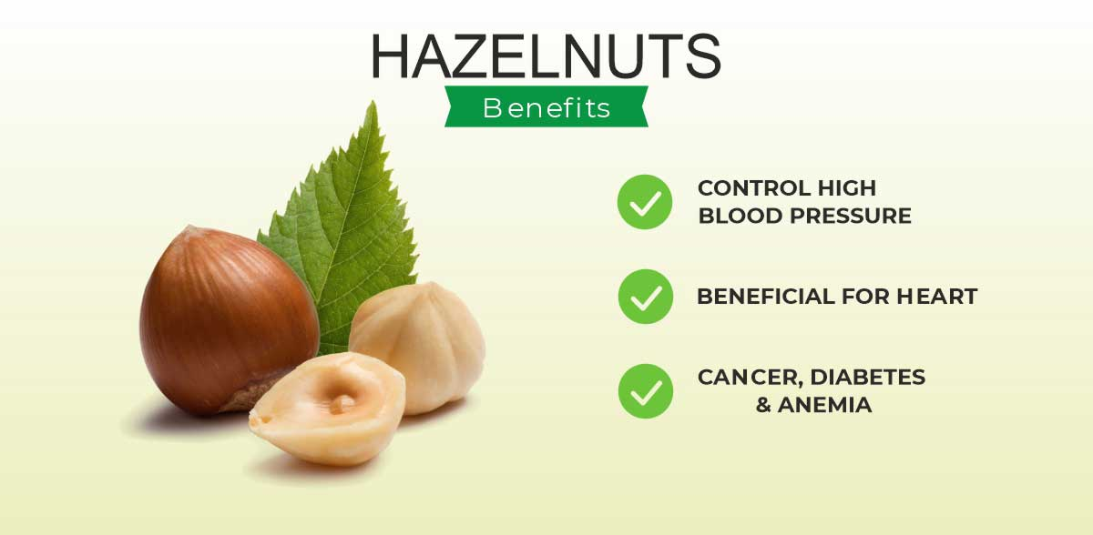 Hazelnut Benefits and Side Effects in India 2021