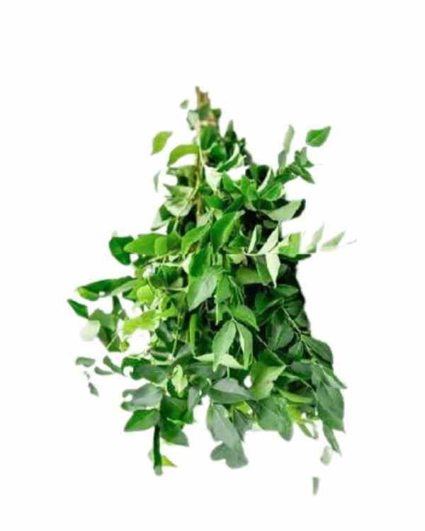 Curry-Leaf