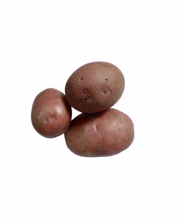 Red-Potato-ApnaSabji